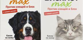 Μέσα Blohnet για γάτες και σκύλους: σχόλια και οδηγίες χρήσης