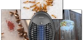 Επανεξέταση αποτελεσματικών παγίδων για τα ιπτάμενα και σέρνοντας έντομα